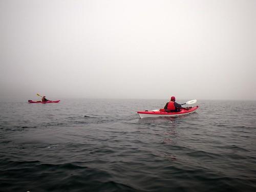 2008-11-30 The Fog 051
