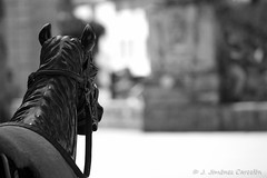 Caballito de madera (By © Jesús Jiménez) Tags: portugal canon photography jc braga jesús repúblicaportuguesa 450d canon450d canoneos450d kdd´s n309 kdd´svigo jesúsjiménezcarcelén estradanacional309 jesúsjcphotography
