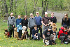 2011 Spring Core Class (Clever Canines Ltd.) Tags: cooper bailey radar elly ozzy fable crybaby fionn