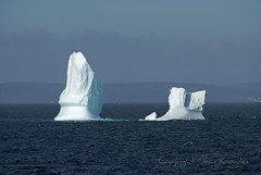Bonavista berg (Jean Knowles) Tags: ocean blue ice water clouds newfoundland spring shoreline arr iceberg geotag allrightsreserved bonavista newfoundlandandlabrador the4elements abigfave diamondheart colorphotoaward crystalaward amazingamateur flickrelite theunforgettablepictures yourbestphotography nottobeusedwithoutmypermission tup2 newfoundlandicebergs digifotopro naturethroughthelens qualitypixels gr8photo copyrightjeanknowles engineeringserendipity