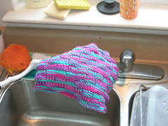 Dutiful dishcloth