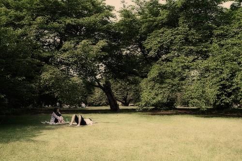 芝生で語らう