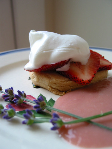 Truly scrumptious. Whipped cream and strawberries Scotch shortbread with ruhbarb compote