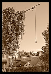 Movie World: Wild West (The_shoeshine_man) Tags: world old holiday movie death rope queensland hanging noose movieworld goldcoast