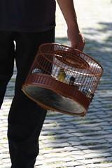 ludzie w Pekinie (aja195) Tags: people beijing birdsnest pastime pekin