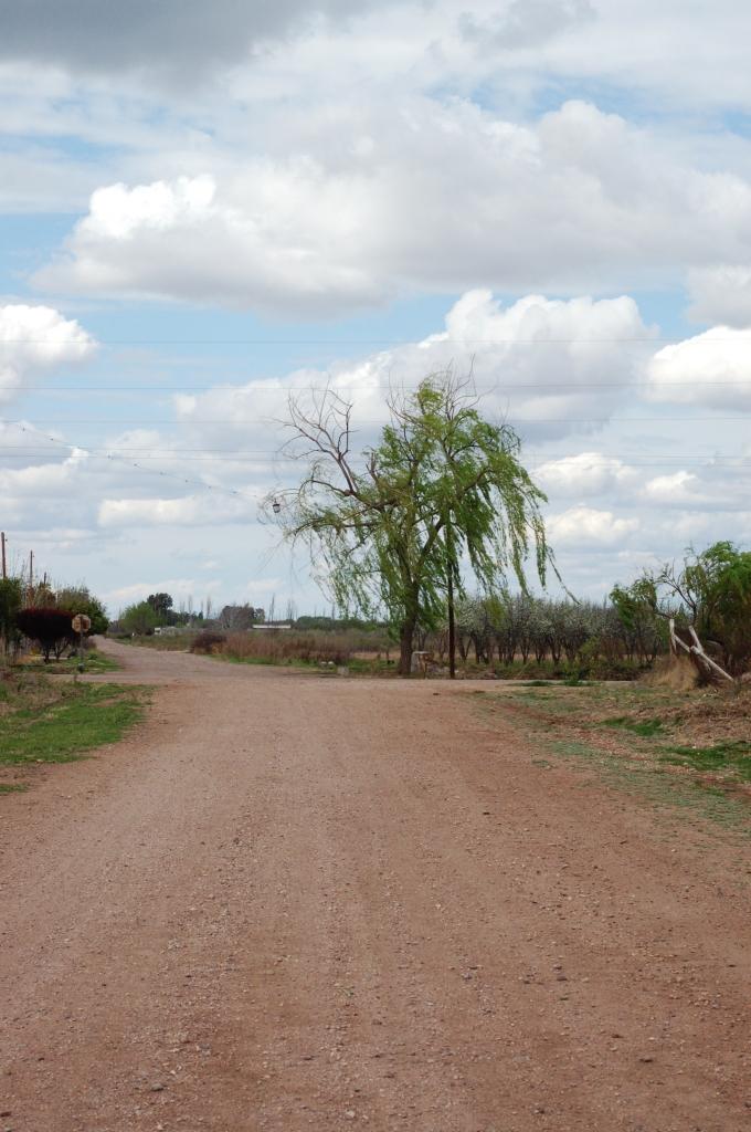mendoza2008 16