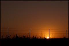 Drive with a view (Kirsten M Lentoft) Tags: sky sun silhouette sunrise fence denmark freeway carwindow kirstenmlentoft happyeveninghugs mmmmmmmmmmuahhh tightesthugs