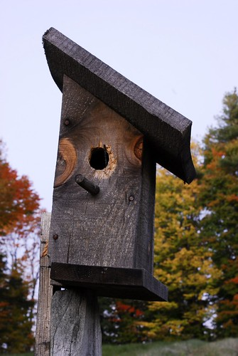Birdhouse at Tims House