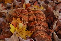 Embossed Leaves