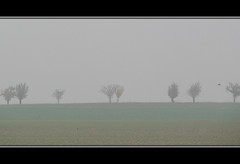Misty Morning (Paco_MUC) Tags: bayern nebel searchthebest franconia 2008 unterfranken 35faves pacomuc mainschleife goldenmasterpiece