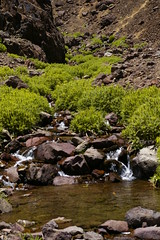 Lac D'Ifni to Nelter (Alan Hilditch) Tags: mountains trek high lac morocco atlas marruecos marokko marrocos moroc difni nelter  almarib