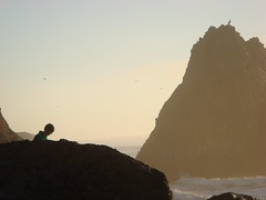 MartinsBeach_2007-202 (Martins Beach, California, United States) Photo