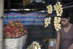 20081114-IMG_4582l (unknown8bit) Tags: trip vacation favorite fruits fruit philippines fruitstand quezon pilipinas rambutan lanzones