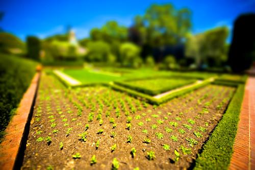 Filoli Gardens, Woodside, California