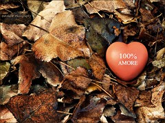 Autumn in my heart (B@rbar@ (Barbara Palmisano)) Tags: autumn red brown love nature foglie leaf heart natura foglia leafs autunno rosso cuore amore autumnal marrone autunnale mywinners