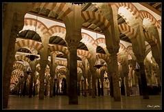 Bosque de columnas (Guijarro Fotografa) Tags: espaa andaluca spain arch cathedral catedral mosque andalucia cordoba mezquita column horseshoe crdoba arco columna herradura godslight a3b