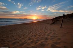 Warrnambool (WilliamBullimore) Tags: sunset beach water clouds fence sand waves dunes au australia victoria posts peninsula hdr warrnambool landscapeorientation canonef1635mmf28liiusm canonrc1wirelessremote manfrotto190xbtripod canoneos5dmarkii thebestofday gününeniyisi manfrotto322rc2heavydutygripballhead