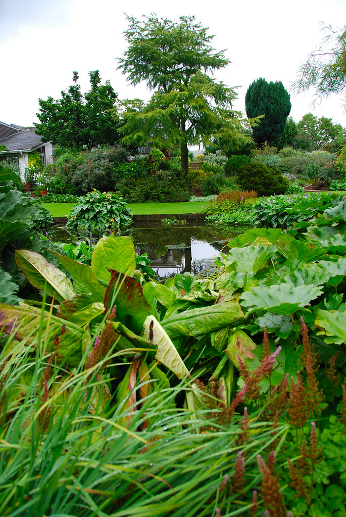 The Beth Chatto Gardens - Almost a Final Pond Look!