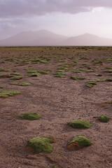 Dusk near San Juan (Luke Robinson) Tags: travel southamerica rock sand desert bolivia desierto barren harsh southamericatravel