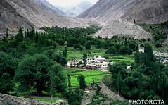 SATPARA VILLAGE (PHOTOROTA) Tags: pakistan green nature colors landscape nikon fields flicker abid concordians photorota