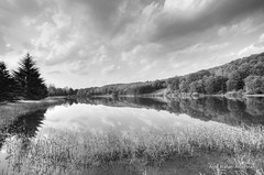 Landscape (Rafakoy) Tags: sky bw cloud white lake black reflection tree nature water clouds digital reflections lens landscape mirror pond angle cloudy pennsylvania country wide pa tress honesdale sigma1020mmf456exdchsm carleybrook nikond7000