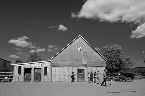 The Barn at Punkin Patch Farm