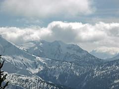Snowgrass Mountain (?) near Frosty Pass up Wildhorse Creek.