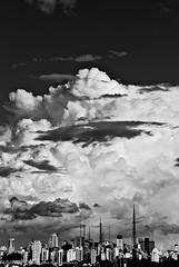 A not so clear skies... (Conrado Tramontini) Tags: city cidade brazil sky urban bw cloud white black weather branco brasil skyline clouds buildings sãopaulo horizon dramatic céu preto sp nuvens urbano paulo nuvem sao dramaticsky ceu tempo horizonte paulista sanpaolo cityline avenidapaulista clima predios metrópole bwdreams dramaticweather