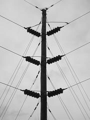 Still Searching (=Jessie=) Tags: blackandwhite bw lake lines power kentucky telephone pole powerlines telephonepole freeman elizabethtown freemanlake