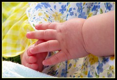 Baby Hands... Baby Feet (lorainedicerbo) Tags: baby playing feet outside hands toes michigan loraine eastpointe dicerbo weeklyperspective lorainedicerbo