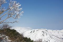樹氷とイワオヌプリ