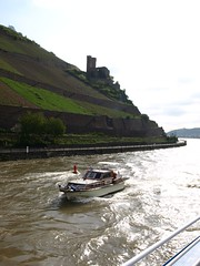 Rhine River Apr 08 009 (MurphMutt) Tags: castle germany rhineriver