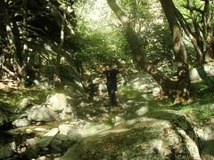 Sotiris (sotoz) Tags: water falls kozani kataraktes velvento metoxi aliakmonas belbento
