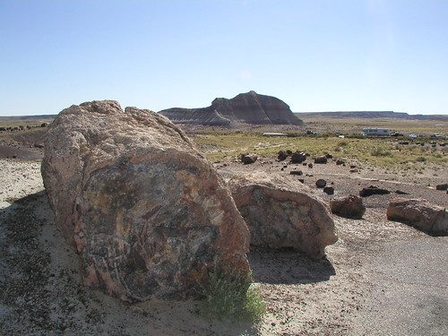 Petrified Forest - Crystal Forest