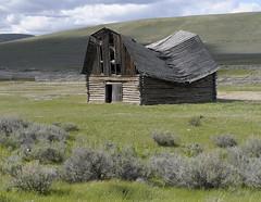 Brokeback Barn (SheltieBoy) Tags: barn montana brokeback monida
