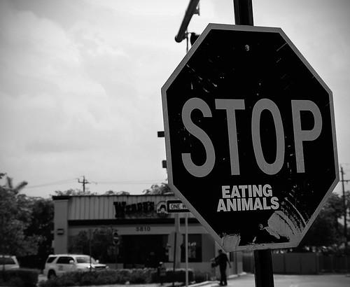 fast food eating