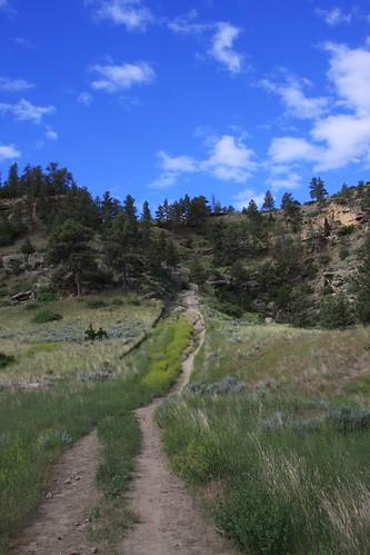 Montana June 208 166