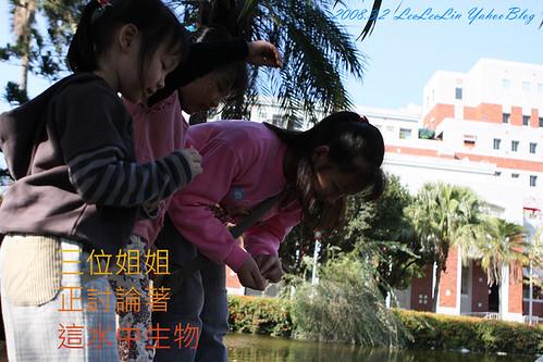 愛情白皮書偶像劇拍攝地|成功大學校園|台南景點