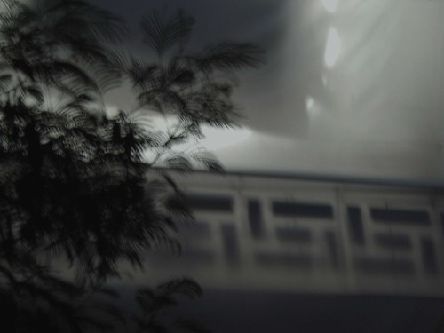 DSCN8448© fatima ribeiro2008
