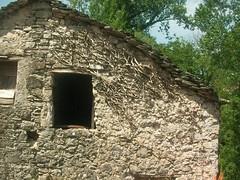 Necro(s)copia (alfiererosso) Tags: muro wall facade cottage campagna oldhouse land campo waste mauer rudere facciata alteshaus abbandonato countryland vecchiacasa viejacasa