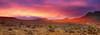 Nevada-Red Rock (Christine Gerhardt) Tags: red panorama usa landscape desert nevada redrock landschaft wüste sonyf707 christinegerhardt