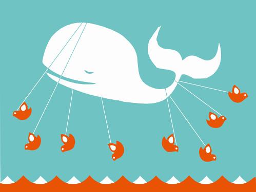 Prevail Whale