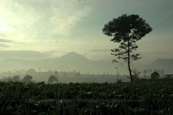 Bandung Morning View