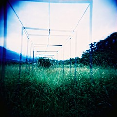 Right Angle (Fabienne Lin) Tags: green 120 film grass square holga lomo lomography fuji rightangle rdp holgagraphy fujiprovia squareformate 120gcnf  holga120gcnf