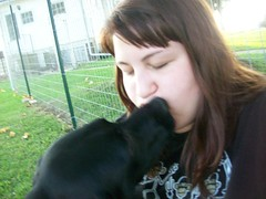 Kiss (C. Redhead) Tags: dog black goofy puppy mutt mix lab kiss pointer german trinity brunette