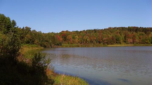 Basswood Pond