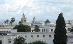 Tunis Skyline (Kurlylox1) Tags: sky skyline clouds palms tunisia tunis minarets blueandwhite