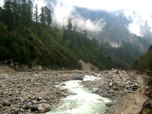 Wild Teesta River