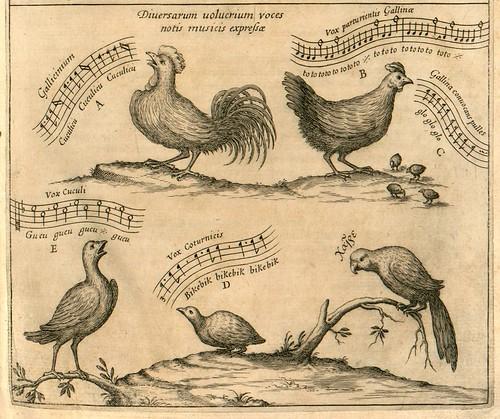 002-Musurgia universalis sive ars magna consoni et dissoni [Tome 1]-voces animales