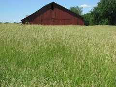DAY TRIP THROUGH THE MEADOW (roberthuffstutter) Tags: new classic barn meadow artphotos oneofmybest huffstutter robsartphotos originalandunretouched